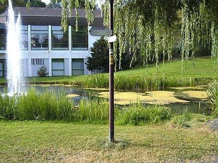 Wasserfontäne im Kurpark
